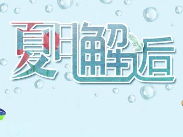 河南尖峰,精品门户网站案例